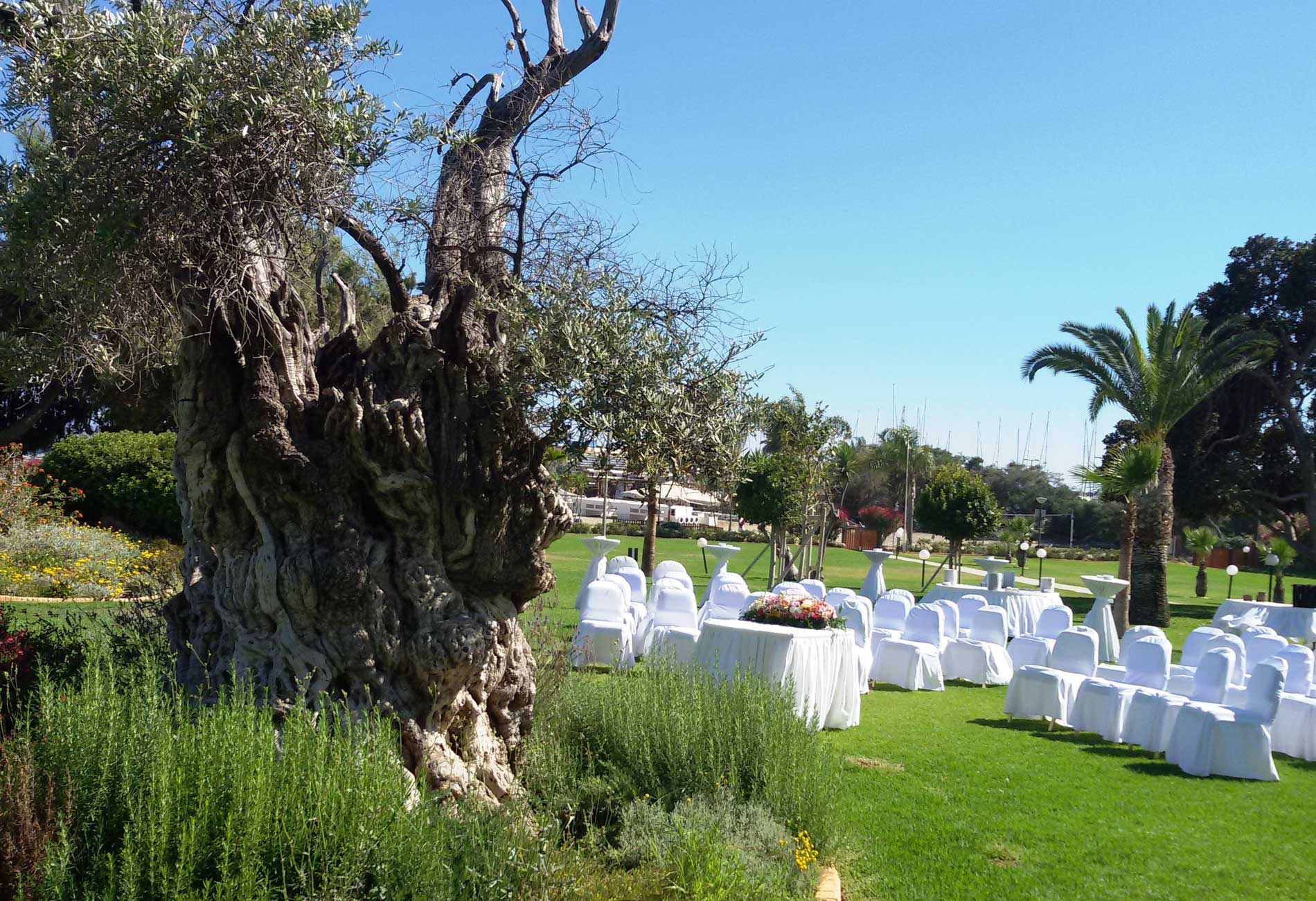 Outdoor Wedding Venue 010